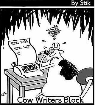Cow-writers-block